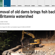 Removal of old dams brings fish back to Britannia watershed